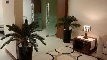 artificial plants, trees, palms & planters - dubai, uae Artificial Plants in Planters